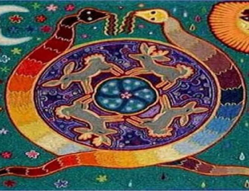 Serpiente Arco Iris y los chamanes Australianos